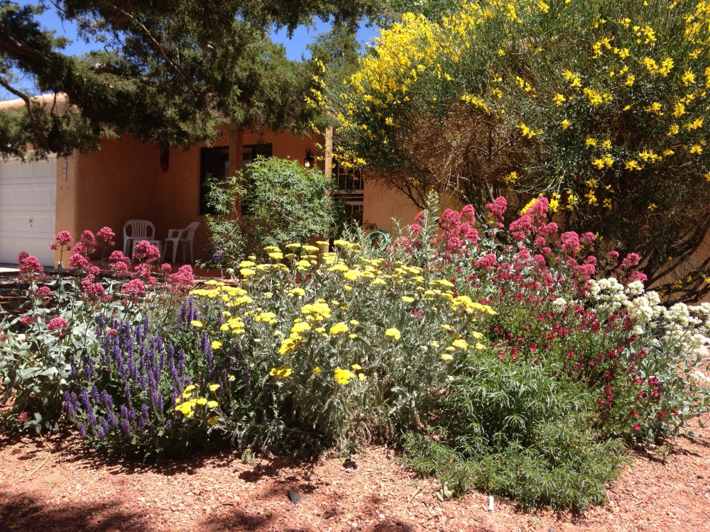 My front garden on Mothers' Day 2014.  Photo credit:  the author