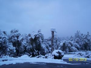 Photo taken from my driveway in Coarsegold, CA.  Photo credit:  Sharon Ballinger