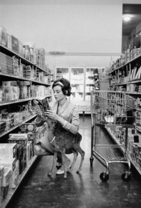The infamous grocery shopping Audrey pic.  Photo from http://40.media.tumblr.com/601351093d46151c4bba9b0336d623b1/tumblr_mnw67zwIUP1rphtnfo1_500.jpg